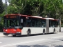 Bacelona Mercedes-Benz Buses
