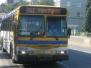 CMBC Orion V Buses