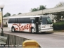 Disney World Buses