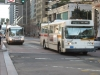New Flyer E800 5208 & ETI Sakoda Trolleybus 5495