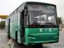 Northern Israel Egged Intercity Buses