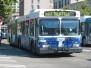 Sound Transit Buses