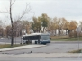 STM Buses