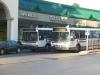 Flxible Metro-B 9257 & Flxible Metro-B 9262